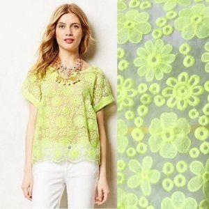 Meadow Rue | Organza Floral Embroidered Top Medium